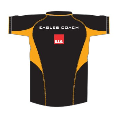 Minis Coaches Kit